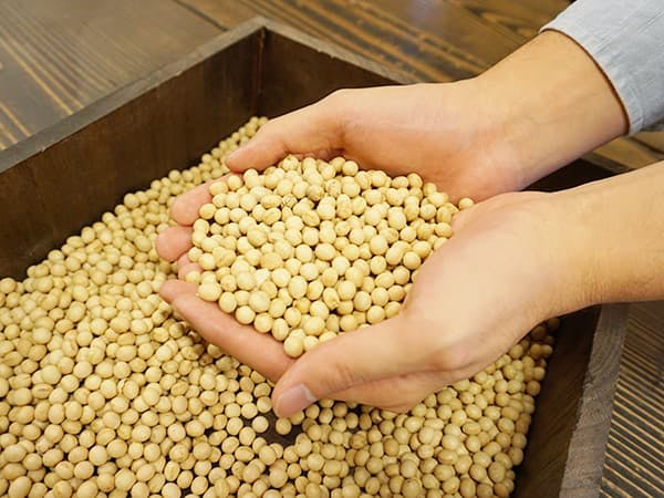 レオアンドレアのおからは特別栽培大豆を使用しています