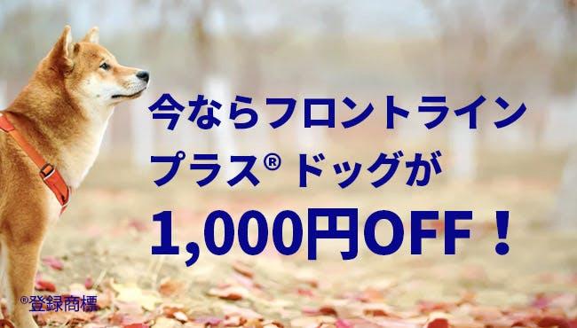 フロントライン プラス® ドッグが1,000円OFF!
