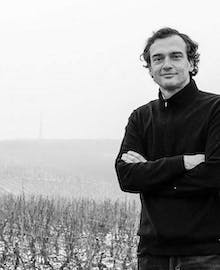 Direct Purchase from the Winegrower - Pierre Brisset - Maison Pierre Brisset (Burgundy)