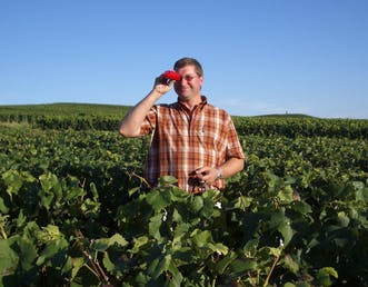 Champagne winegrower