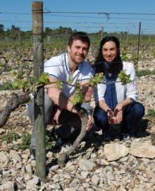 Maison Ventenac (Languedoc) - Import Export French Wine