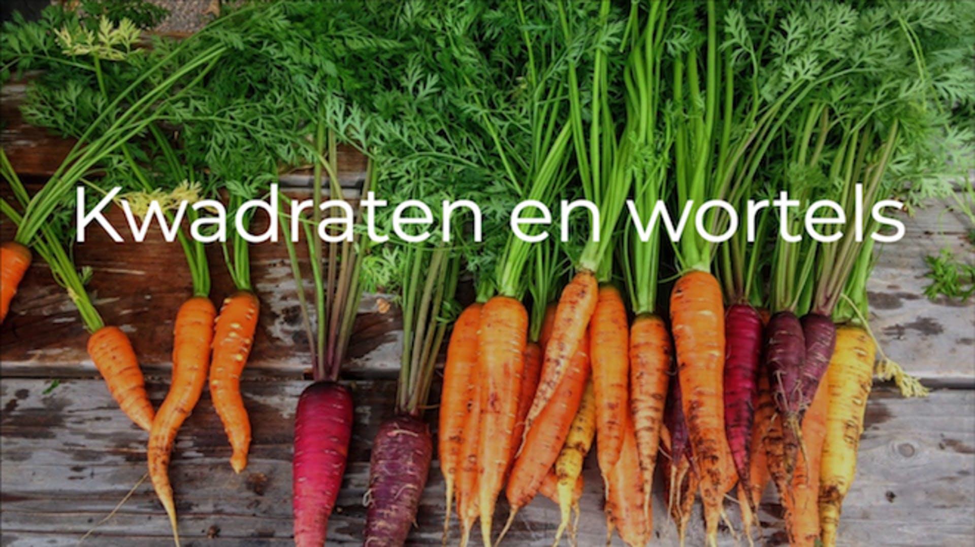 Les kwadraten en wortels