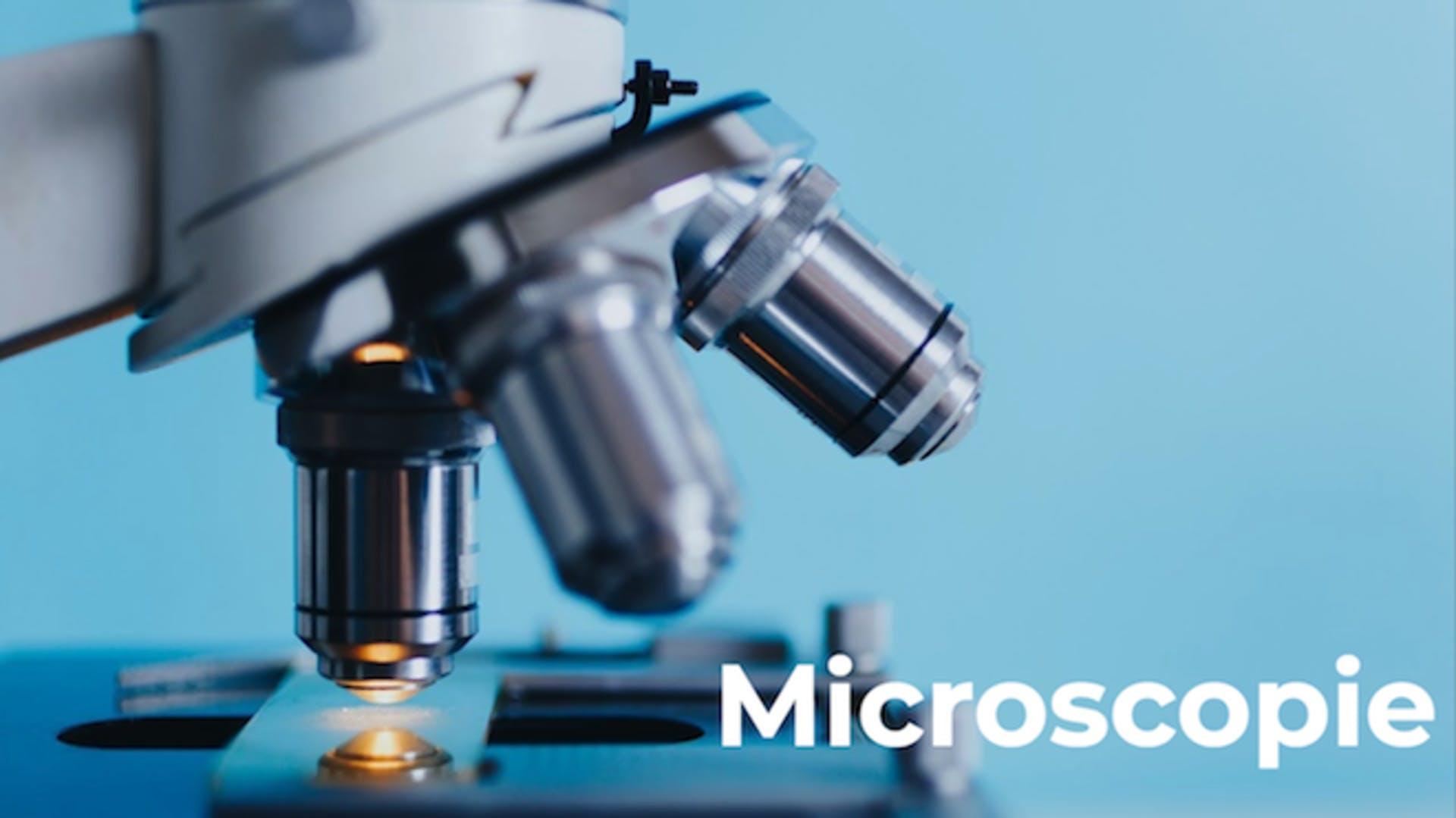 Praktijkles microscoop