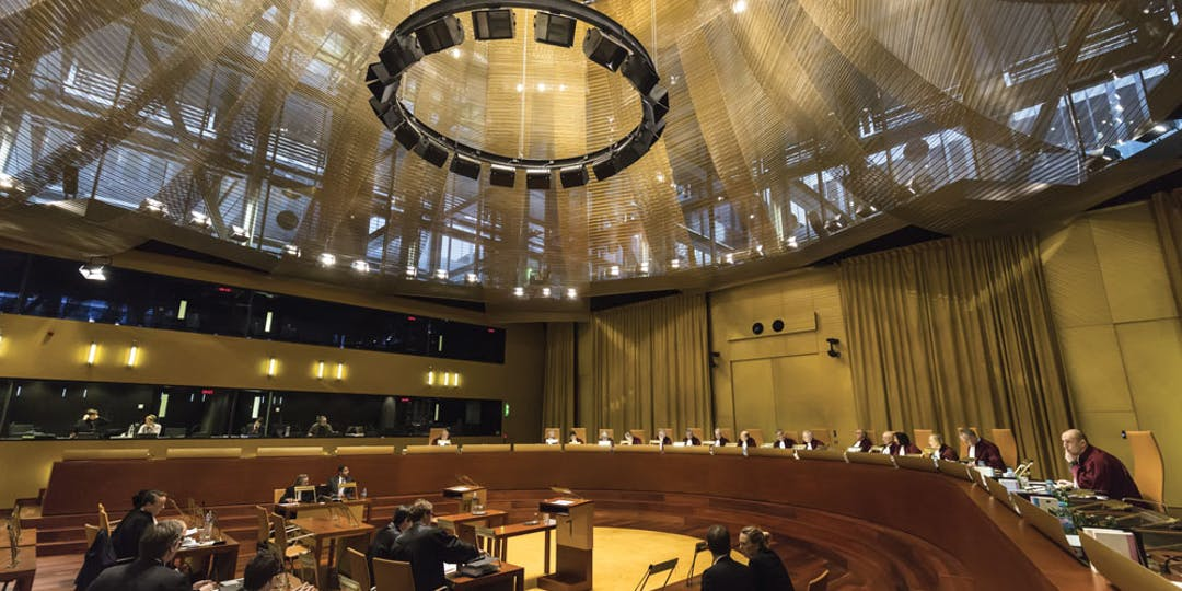 La Cour de justice de l'Union européenne siégeant en grande chambre, ce qui est la marque des « affaires particulièrement complexes ou importantes ».
