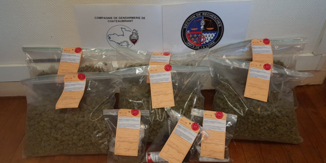 Saisie de drogue par la Gendarmerie (photo Gendarmerie)