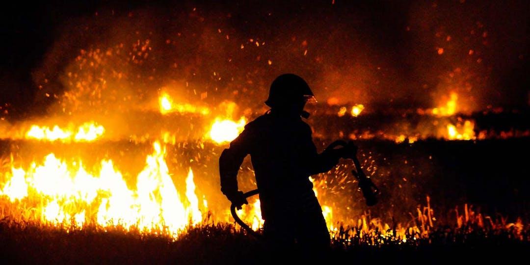 Dans le Var, des gendarmes font partie d'une cellule pour trouver l'origine du sinistre ayant entrainé la combustion de plusieurs milliers d'hectares de forêt. (Photo d'illustration: F.Jones/Unsplash)