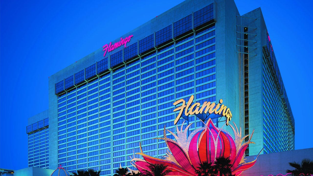 Flamingo Hotel Vegas
