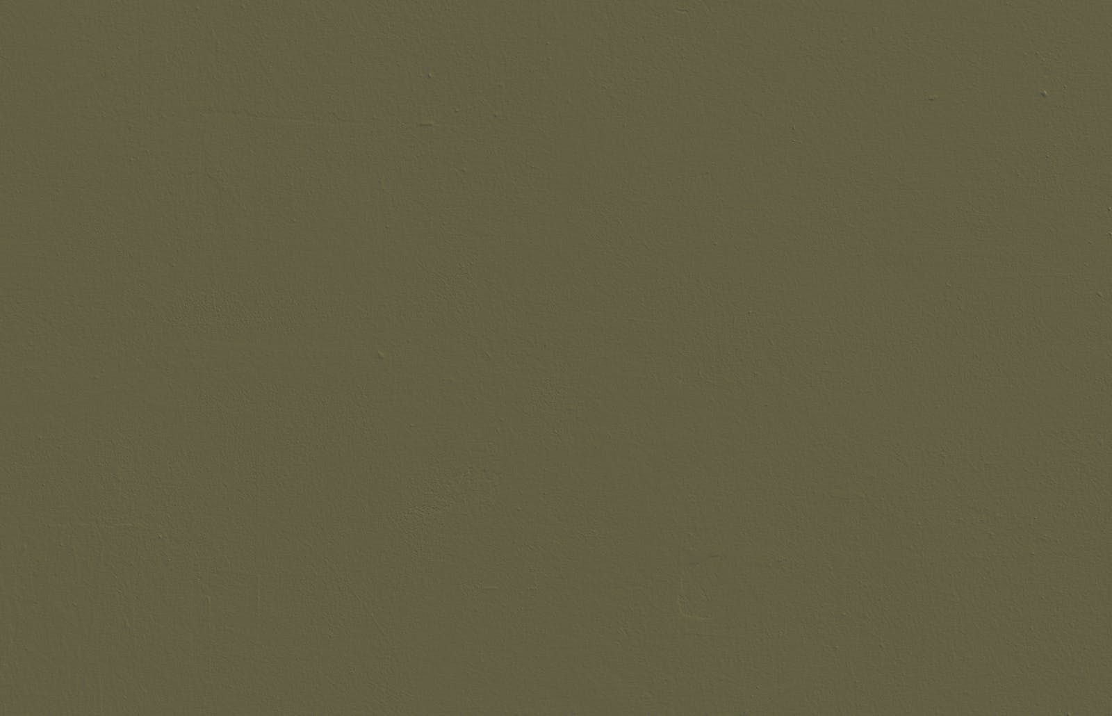 Textured wall painted in Lick Green 05 paint