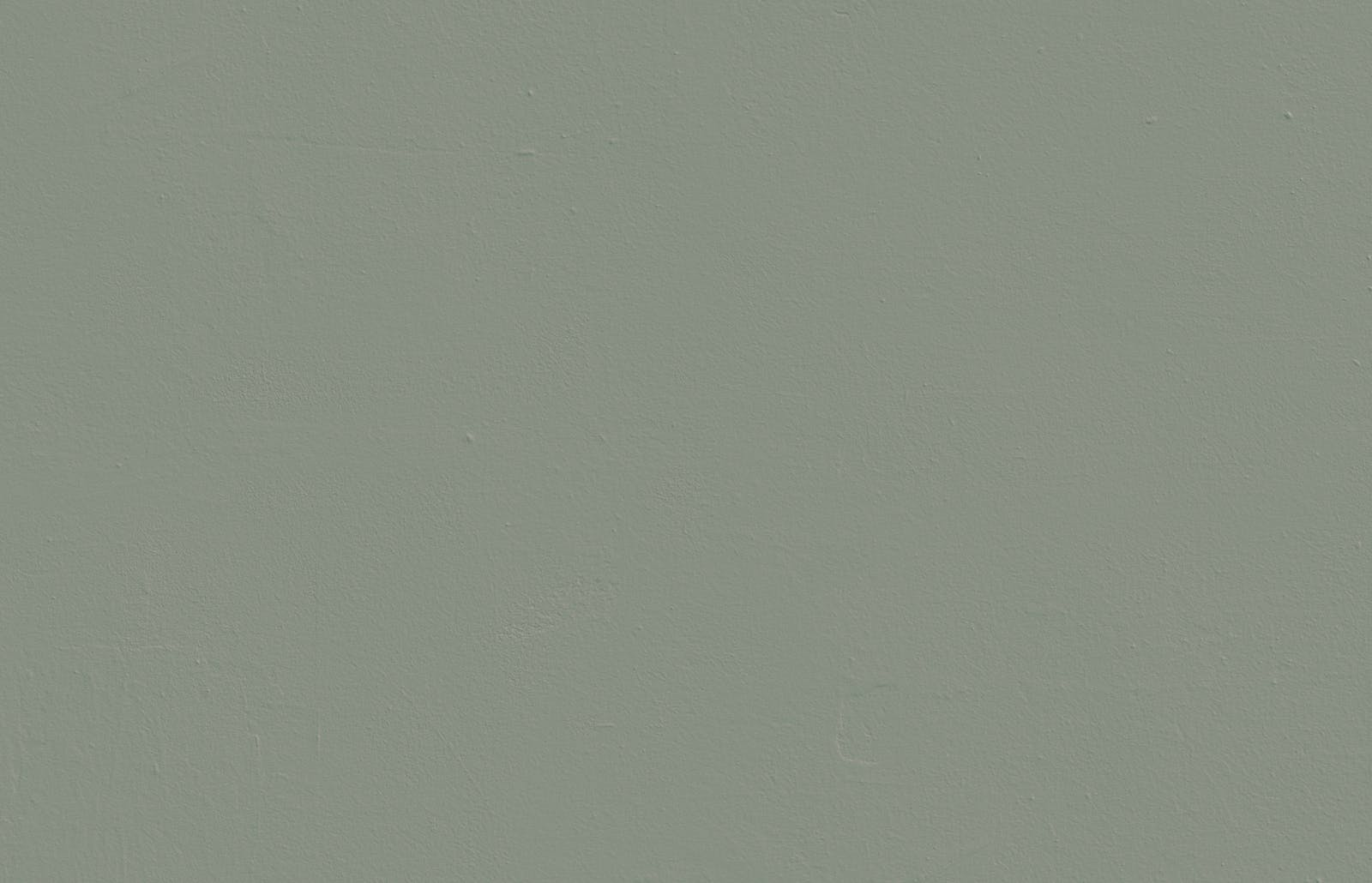 Textured wall painted in Lick Green 02 paint