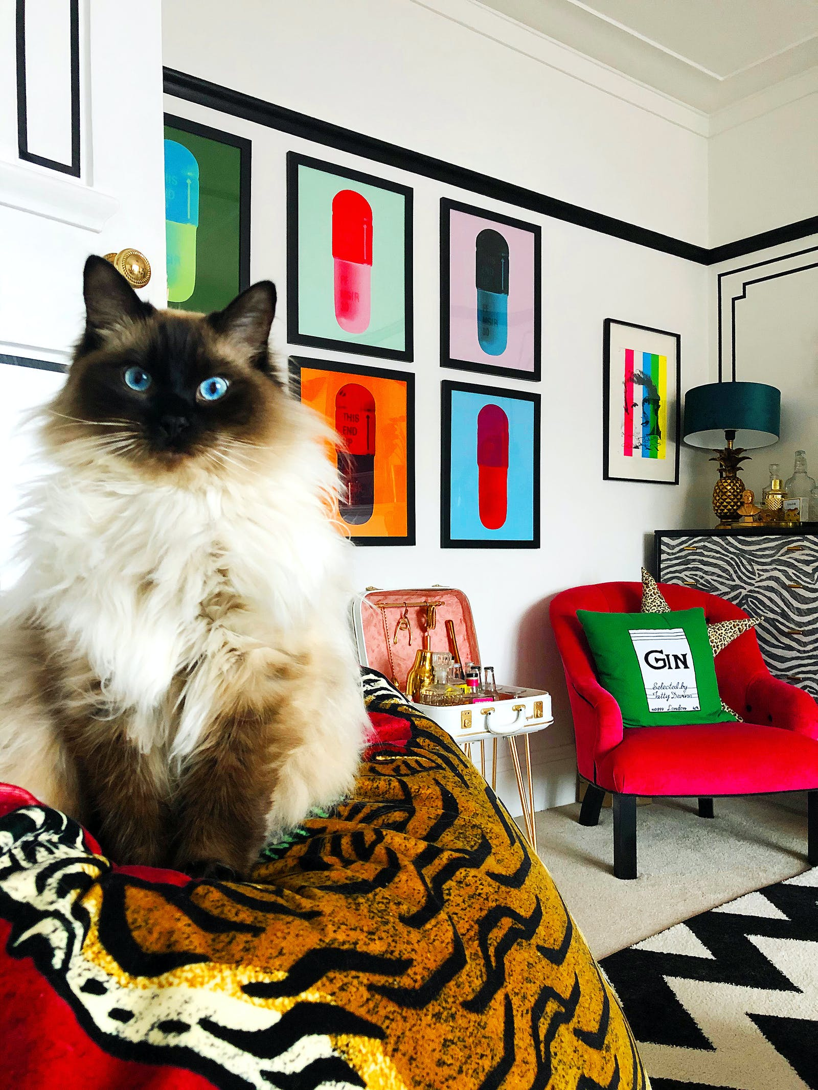RHOI Pablo the cat sits in foreground, with Damien  Hurst pill prints on wall above a bright red chair and portable retro bar