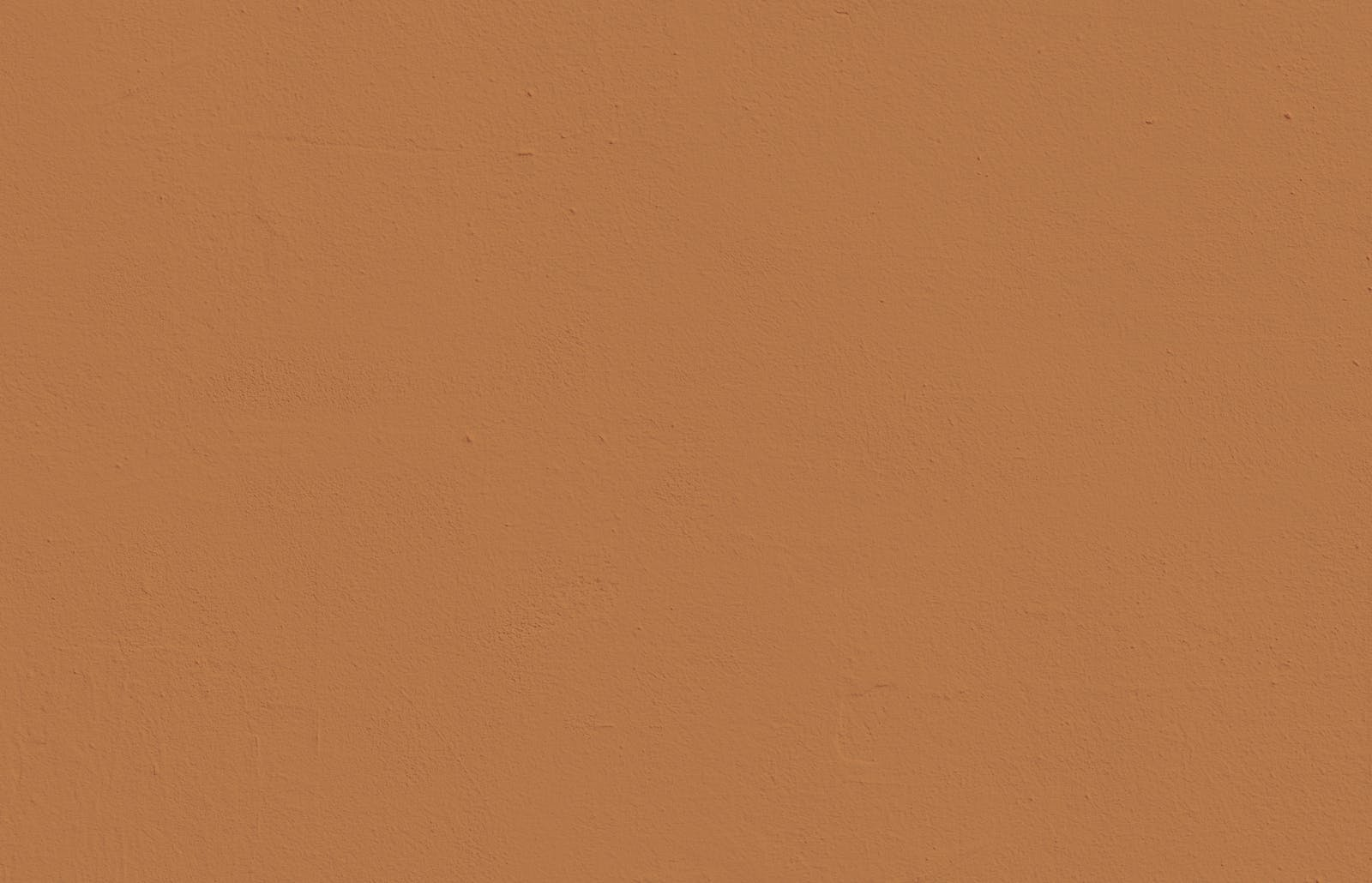 Textured wall painted in Lick Orange 02 paint
