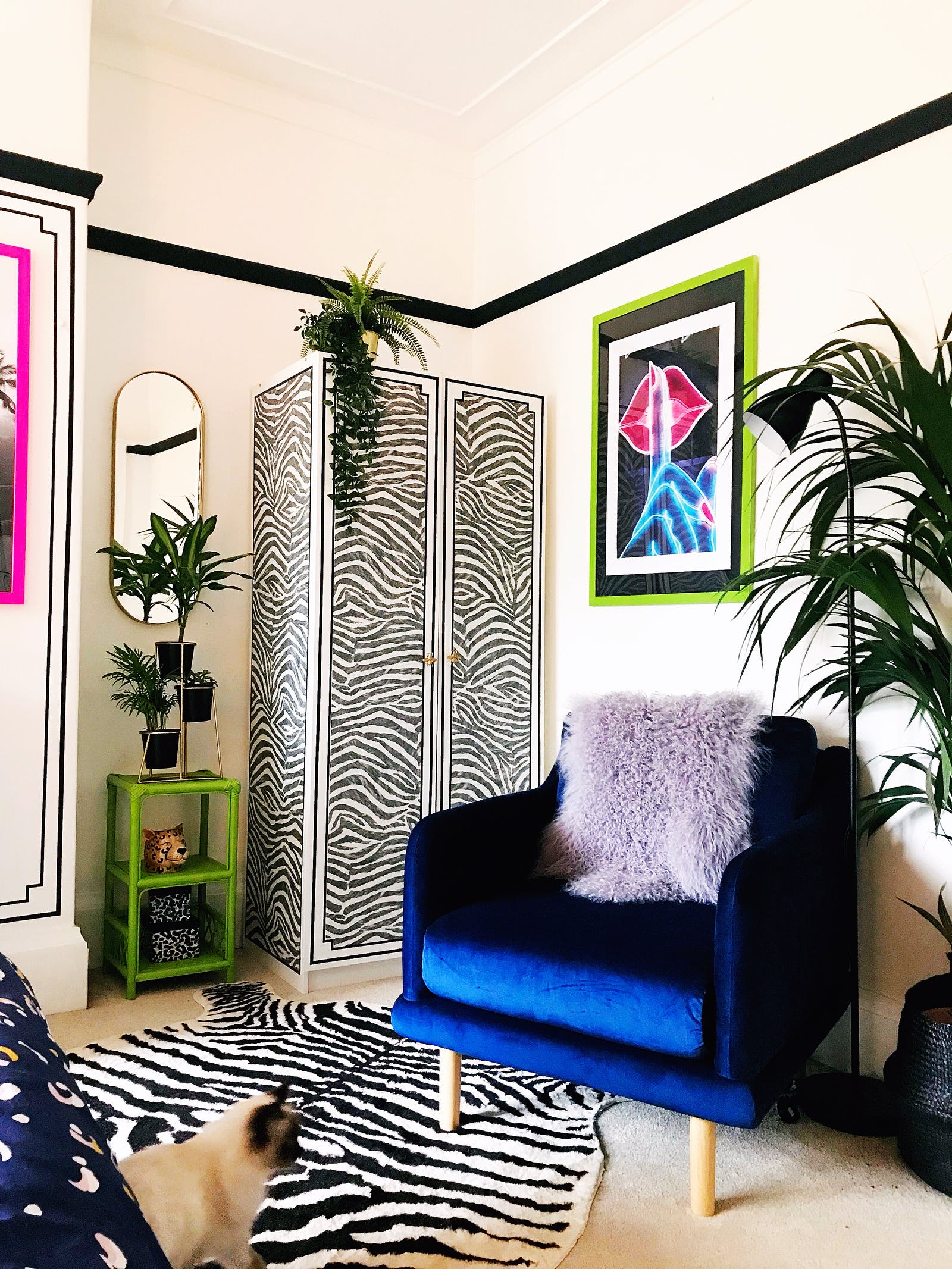 Living room with a blue chair and zebra furnishings
