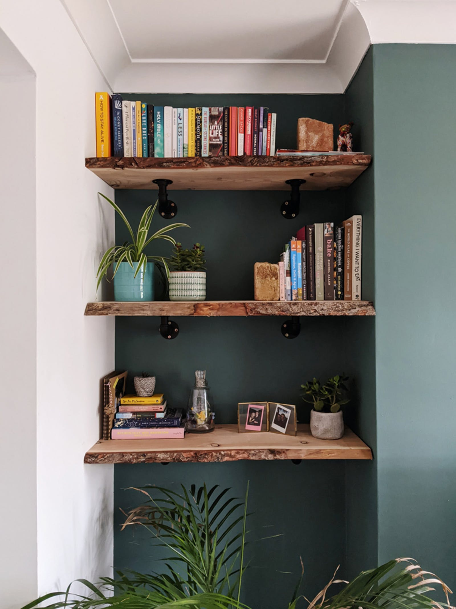 Open shelving with walls painted in Lick Green 04