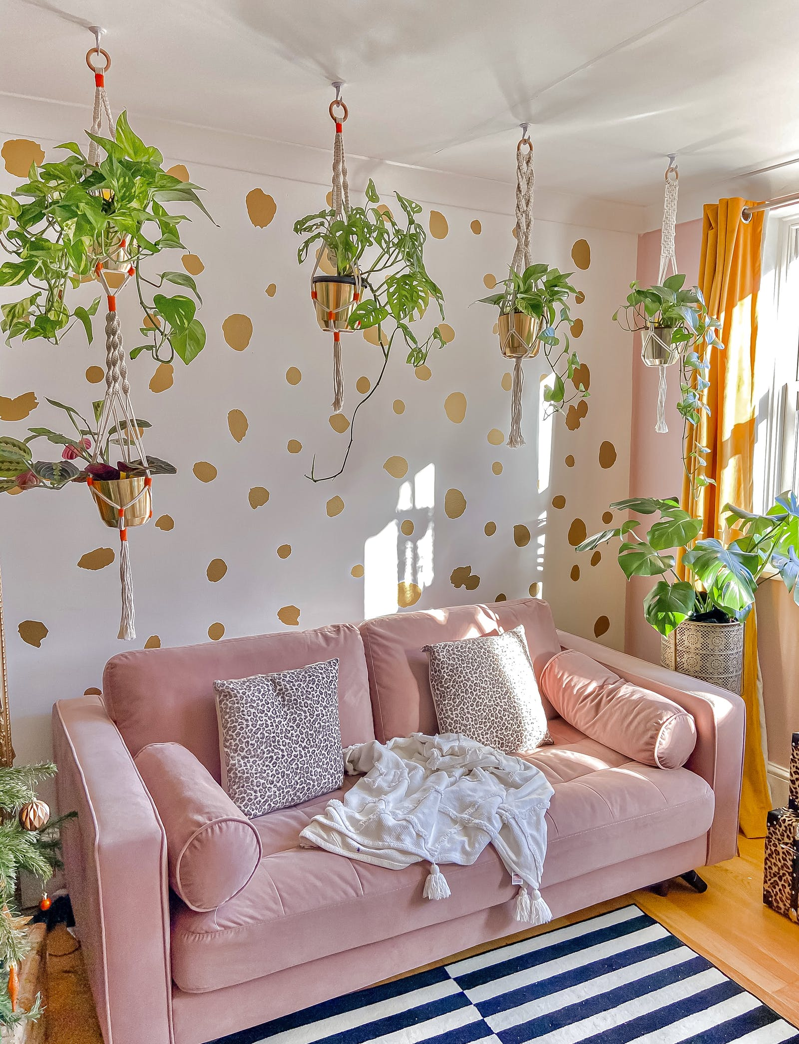 Brightly coloured living room with polkadot wallpaper and hanging plants