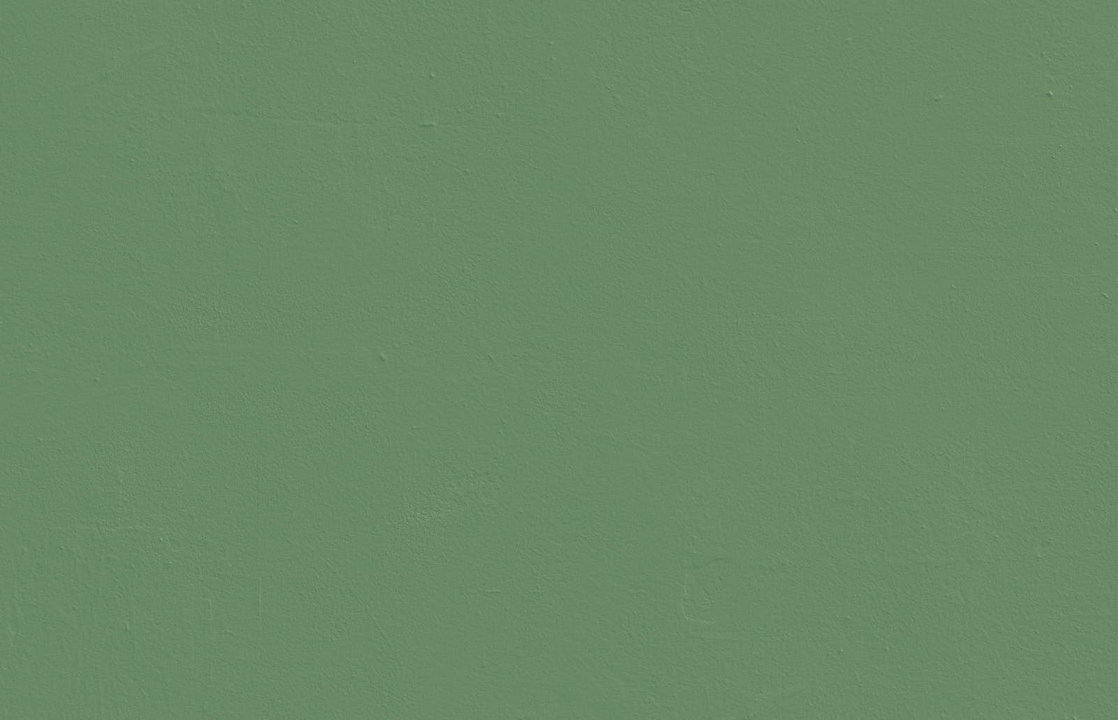 Textured wall painted in Lick Green 07 paint