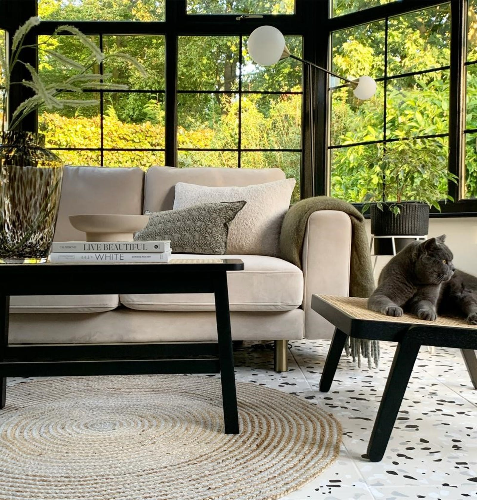 Beige sofa and rattan furniture details with cat lounging on rattan stool