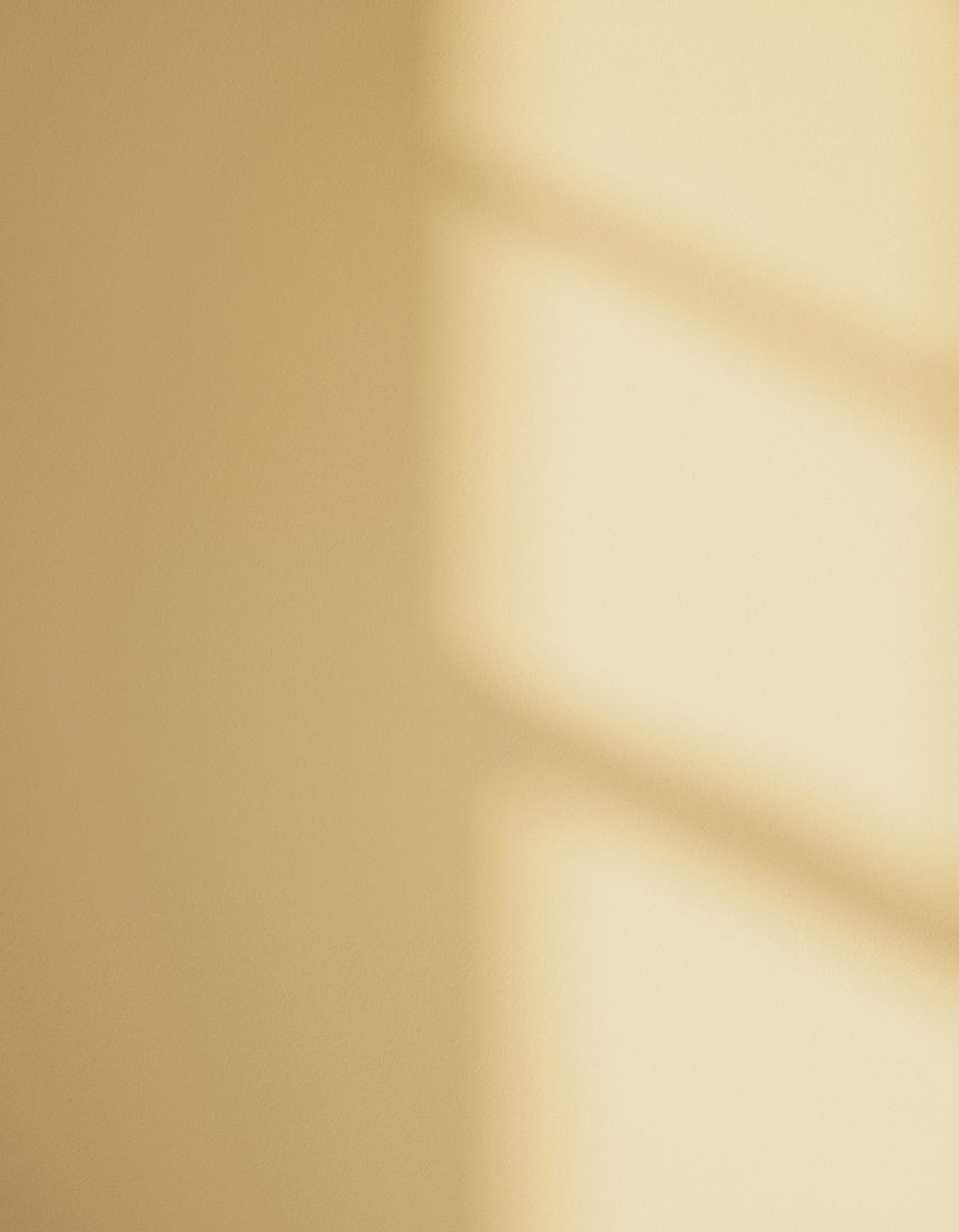 Wall showing Yellow 01 in varied natural light