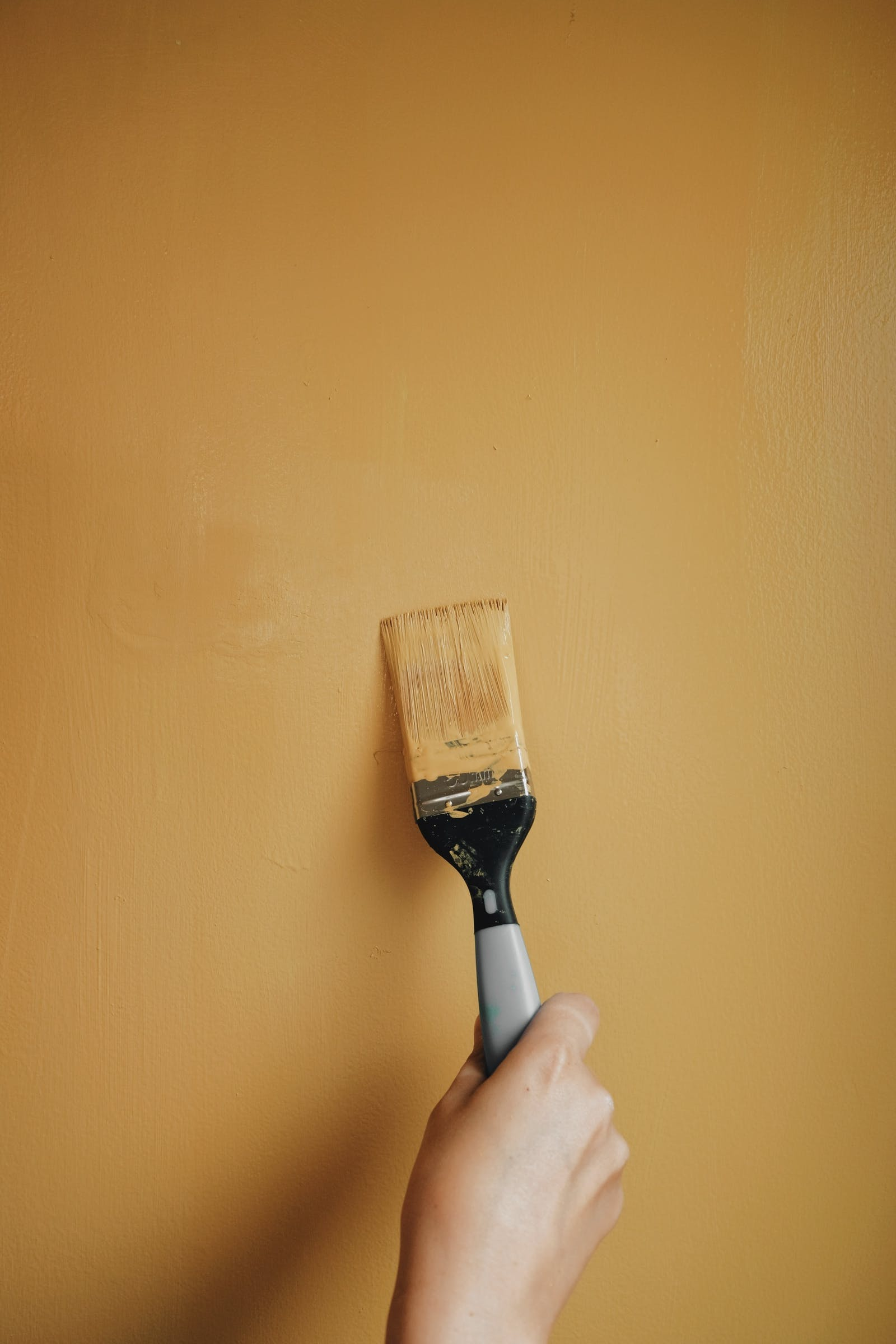 Paint brush topping up wall painted in Lick Yellow 02