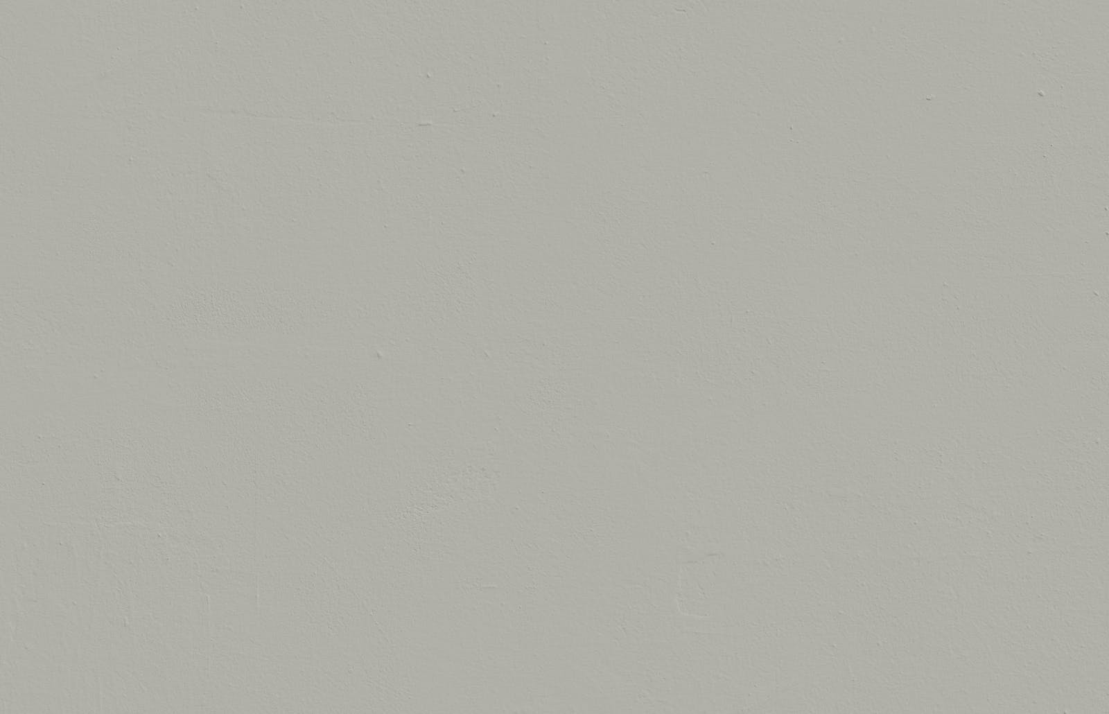 Textured wall painted in Lick Grey 04 paint
