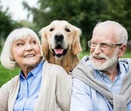 Das Rentensystem – Wie funktioniert es und vor welche Herausforderungen stellt es uns?