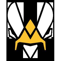 Team Vitality.bee