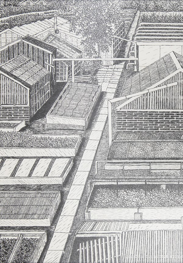 An illustration of the nursery of Hermanus Schoemaker