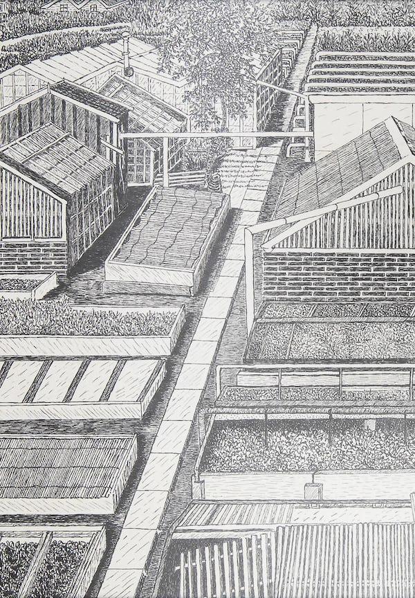 An illustration of the nursery of Hermanus Schoemaker