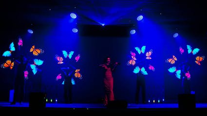 Live-Violinist with four Poi-Artists who draw butterfly-visuals.
