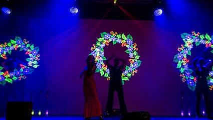 Live-Violinist with three LED-Perfomers, who show Flower-Visuals.
