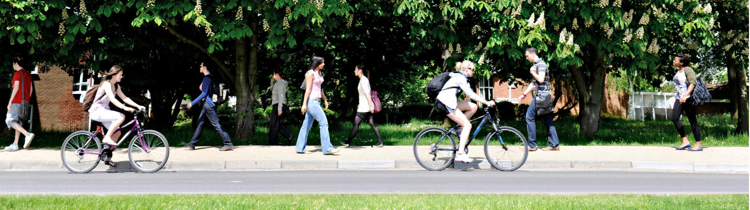 Banner image with two people cycling along the road in front of people who are walking, against a backdrop of trees.