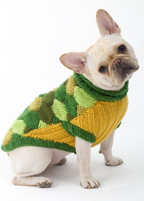 Knitted dog turtle costume for Halloween