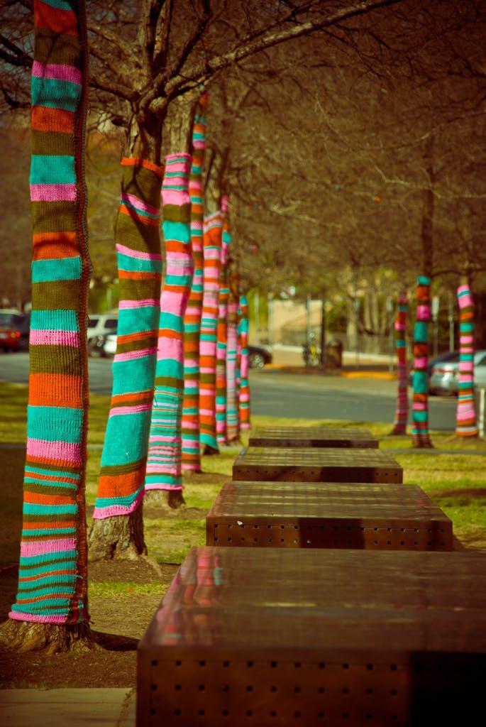 Austin, US tree yarn bomb