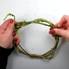 Step 3 - wind vines into circle