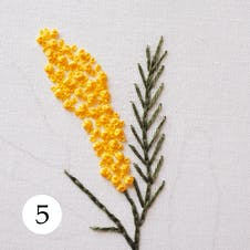 Mimosa pattern step 5