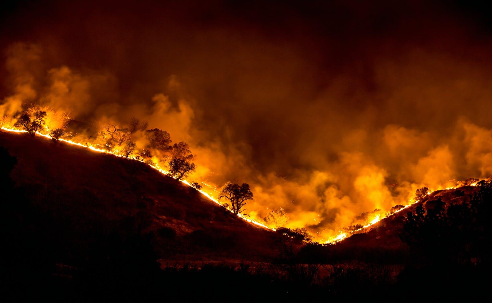Woolsey Fire Emergency Relief
