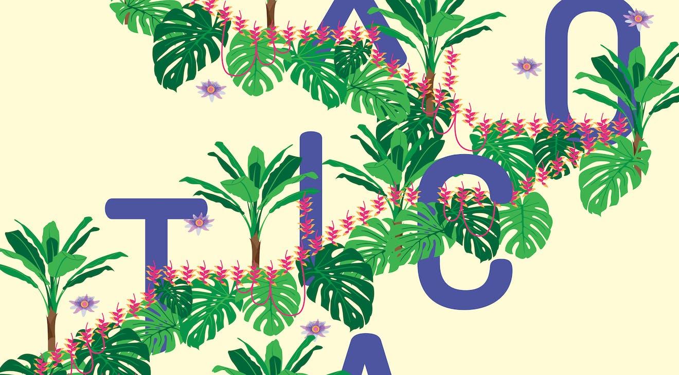 Extrait d'une affiche avec des bananiers et des plantes exotiques