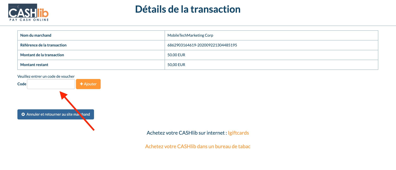 details transaction cashlib