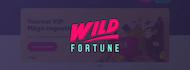 banner wild fortune