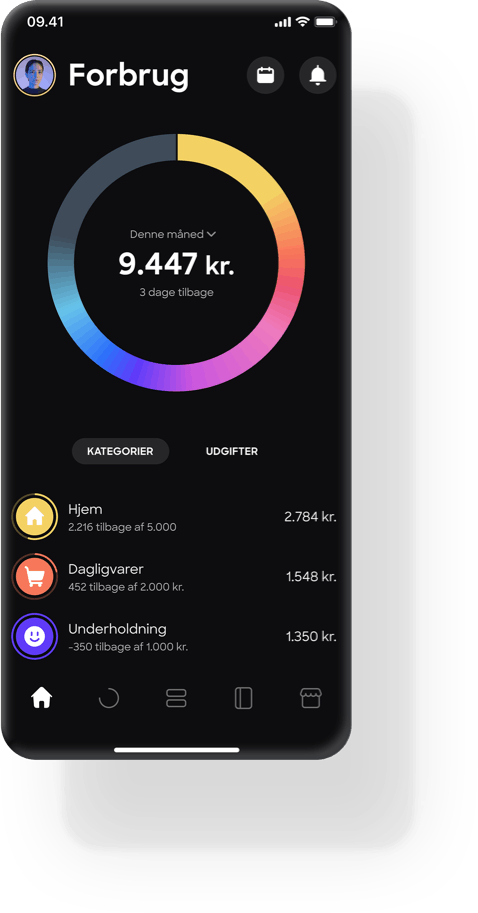 Spend overview in Lunar app