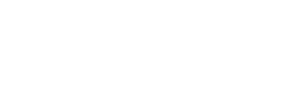 EngFlow logo