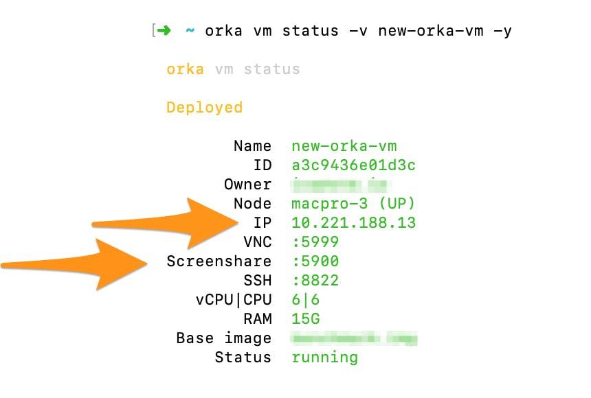 Screenshot of Orka CLI showing IP address and screenshare port