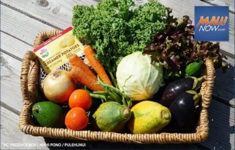 Maui Harvest Vegetables in a basket