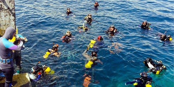 Mergulho - Cabo Frio - RJ