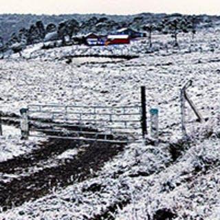 Curta a neve em São Joaquim