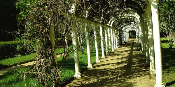 Jardim Botânico - Rio de Janeiro - RJ