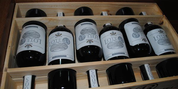 Vinho - Petrolina - PE