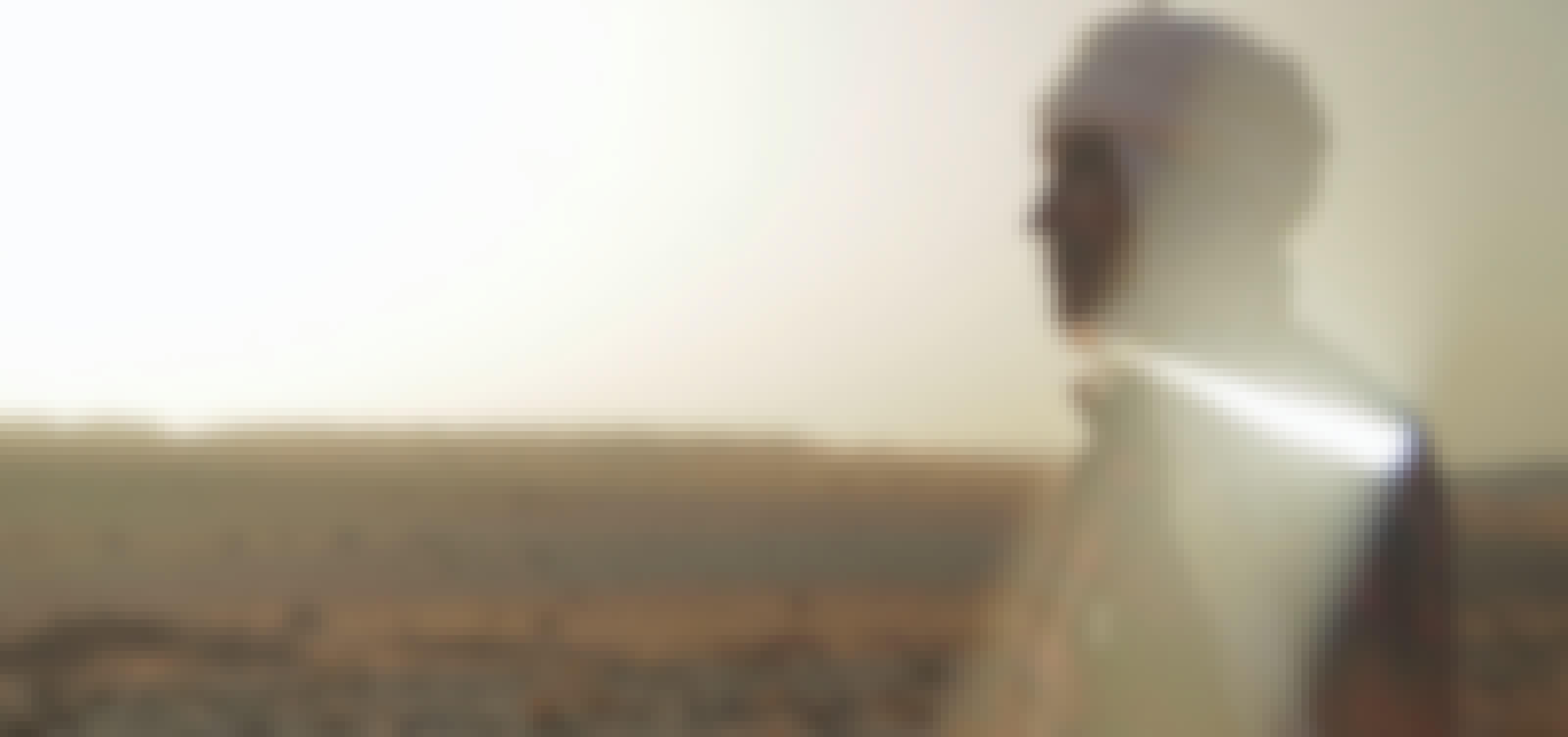 Ibn Battuta on the desert