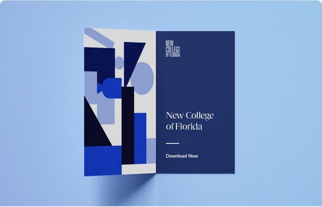 New College of Florida Case Study
