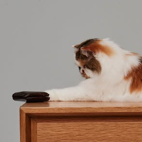 Cat pushing a wallet off a credenza
