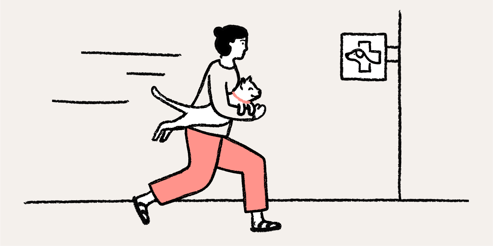 Woman running with her cat to the Vet